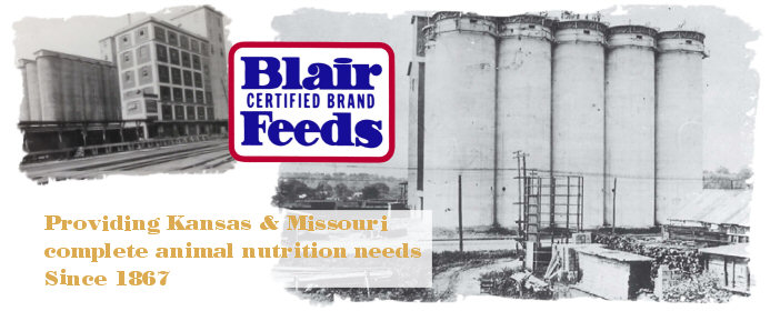 Blair Certified Brand Feeds